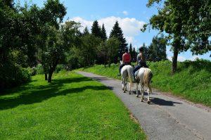 Deux personnes de dos sur des chevaux remontant un chemin en pleine campagne